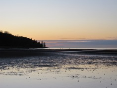 I walked west. Vancouver Island was barely visible in the distance. People and dogs played in the fading light.