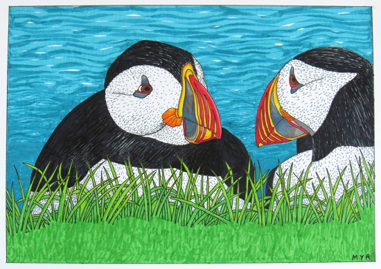 Atlantic puffin drawing